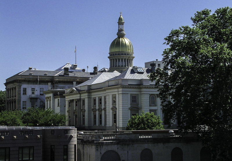 Picture of NJ State House